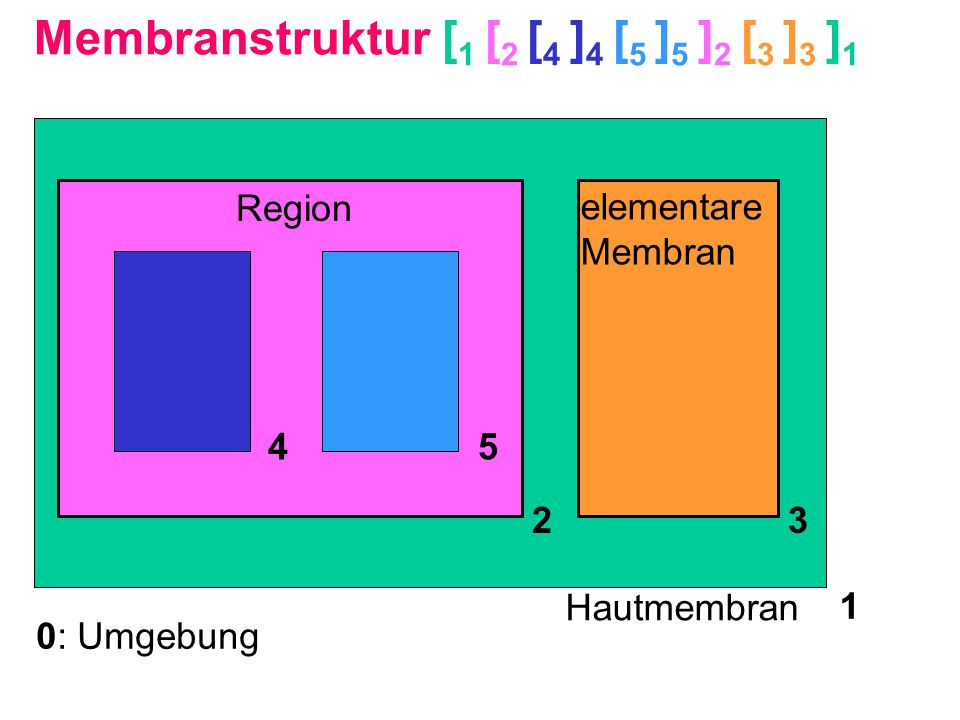 Membranstruktur [1 [2 [4 ]4 [5 ]5 ]2 [3 ]3 ]1
